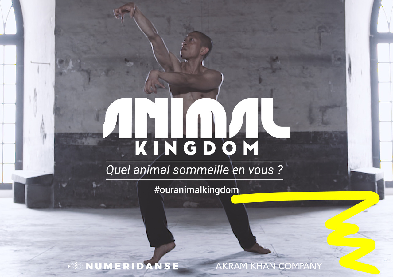 illustration de ANIMAL KINGDOM - projet participatif sur Numeridanse